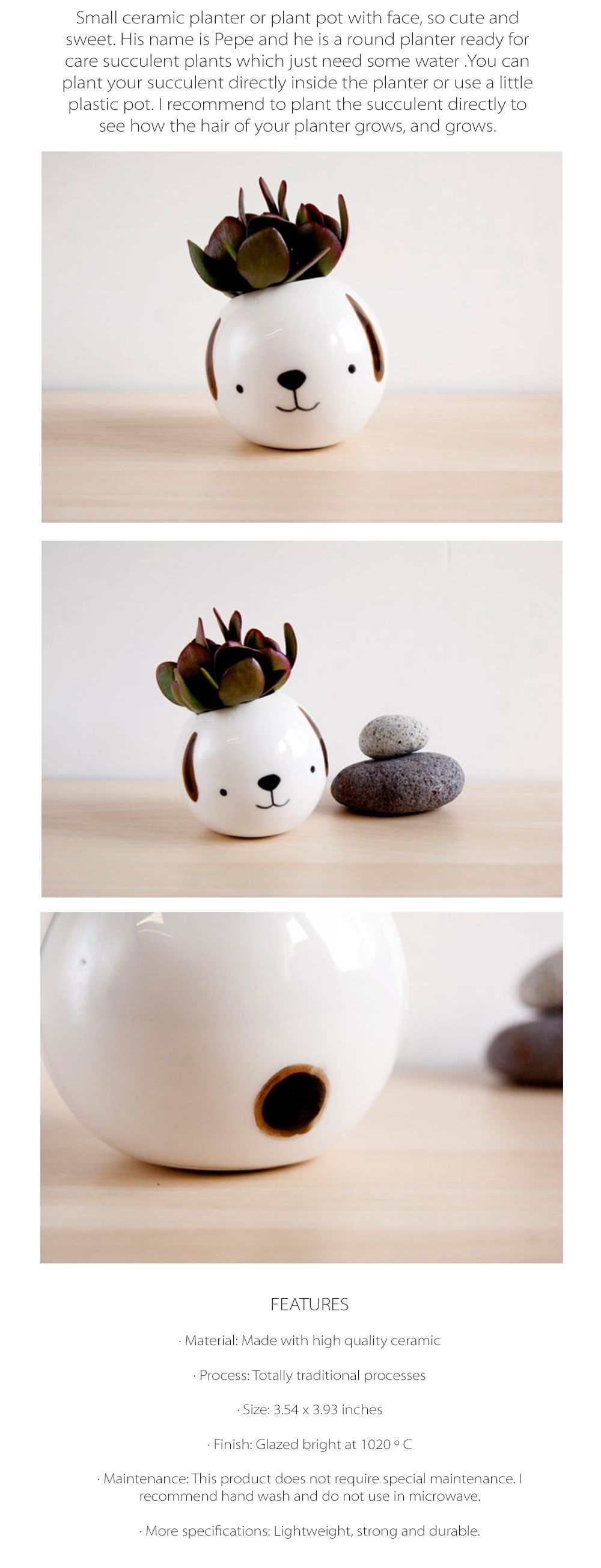 Dog Succulent Planter Cute Animal Planter