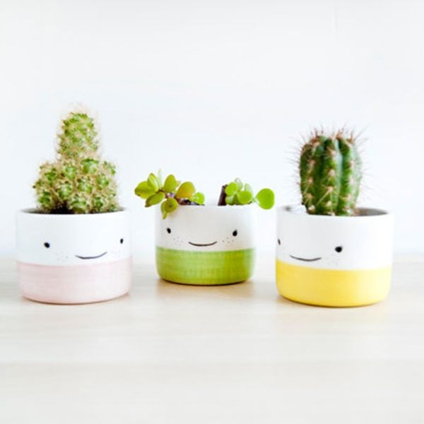 Smiling Faces Mini Pots
