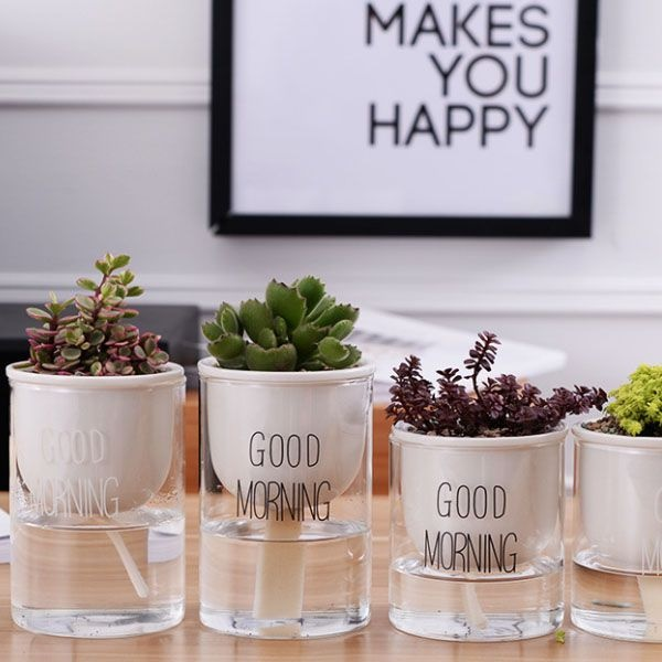 product image for Good Morning Planter