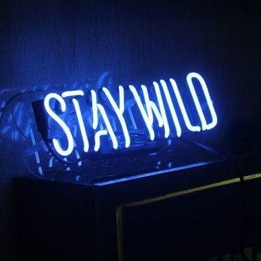 Stay Wild Blue Neon Sign
