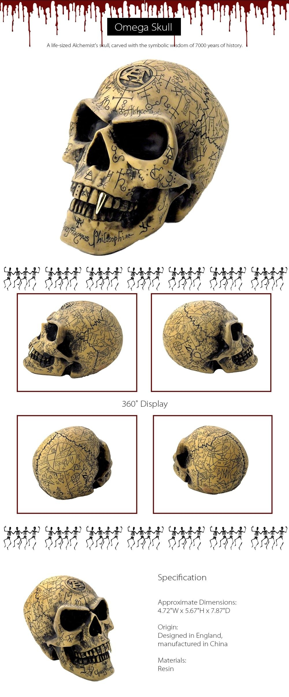 Omega Skull  A Life-Sized Alchemist's Skull