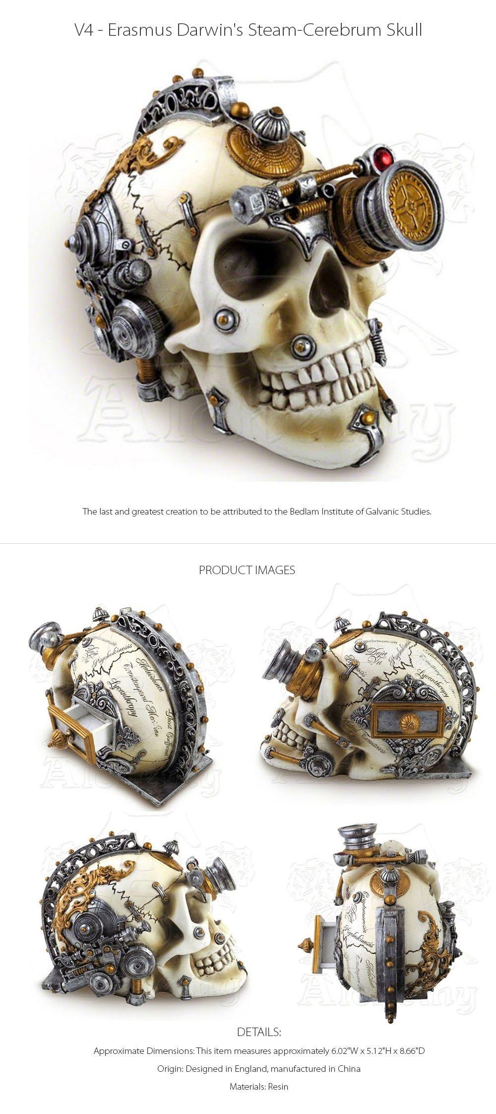 Erasmus Darwin's Steam-Cerebrum Skull Decorative Skull with Hidden Compartment