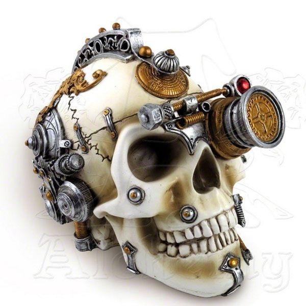 product image for Erasmus Darwin's Steam-Cerebrum Skull