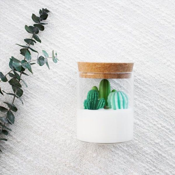 Cacti Candle